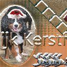 Vrolijk Kerstfeest Gemaakt voor onze feestbook tijdlijn maar gelijk ook iedereen fijne feestdagen toegewenst