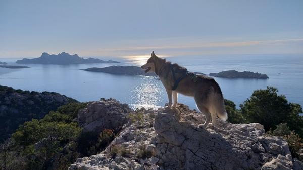 Uitzicht vanuit de bergen bij Marseille