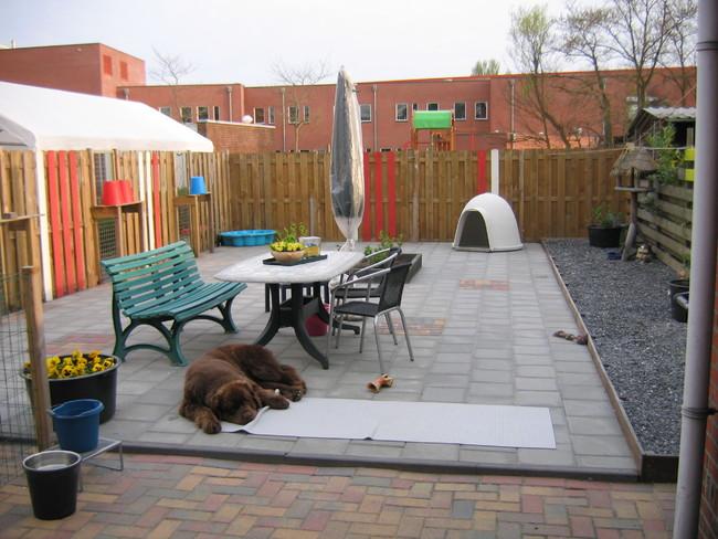 Hond Vriendelijke Tuin : Is jullie tuin ingericht voor de honden. hondenforum