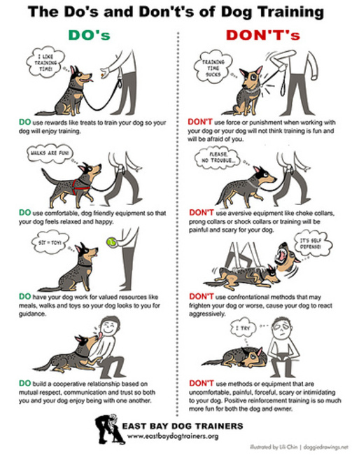 flirting moves that work body language examples kids project printable