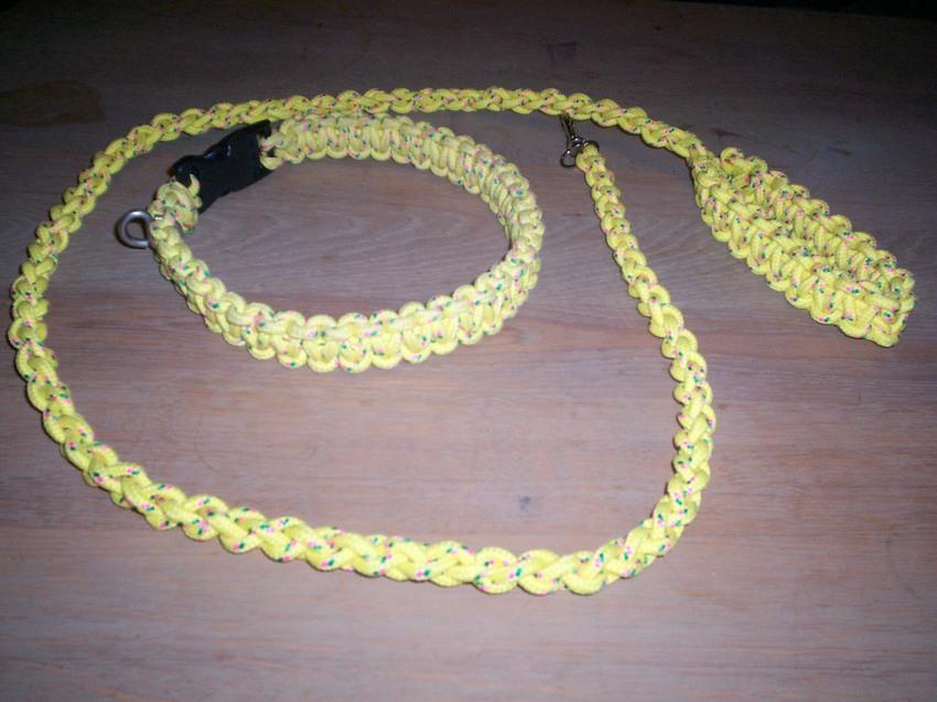 hanger halsband hond