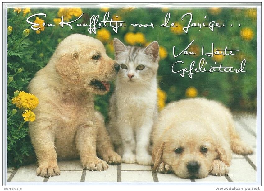 Bekend Honden Verjaardagskaart Aan 17 Wofosogo