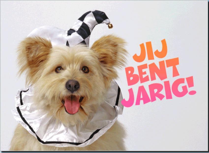 Hiep Hiep Hiep Hoera Bonny Jarig Hondenforum