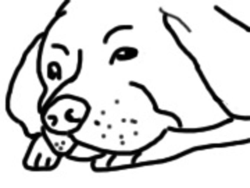 Honden Tekenen Computer Weer Tekeningen Pagina 6 Hondenforum