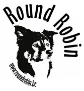 Round Robin border collies