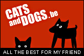 Cats&Dogs - All the best for my friend