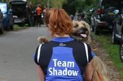honden foto van naomi and my own Shadow and u-doggies Roxy, Faith en Indy